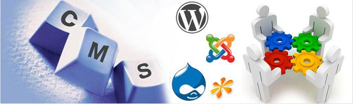 cms-based-website-designing